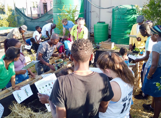 Harvest at Unakho, thanks to the Corporate Social investment by PPECB