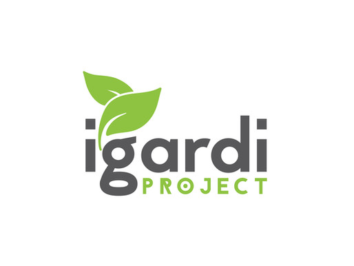The iGardi Project - Vegetable Garden build - Masibambane Service Center - Samora Machel