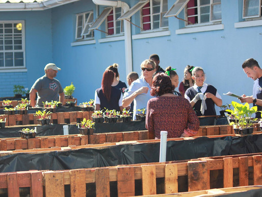 William Lloyd Primary School green their thumbs thanks to the Future Foundations, a Novus Holdings I