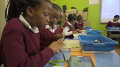 Using technology and education as a means of empowerment
