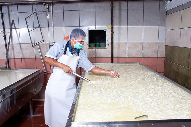 worker in cheese factory.jpg