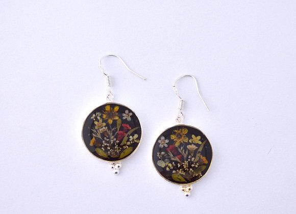 Black Round Earrings - Australian Wildflower jewellery