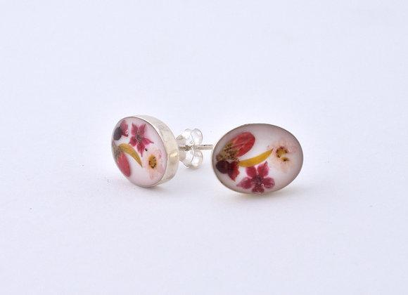 White Oval Stud Earrings