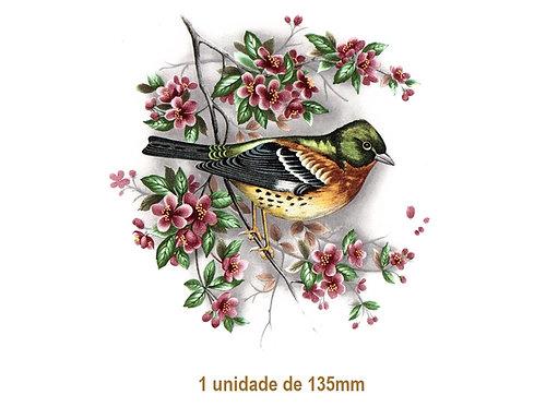Bird on Cherryblossom - 135mm