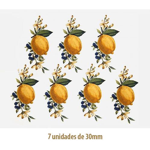 Lemons - 30mm