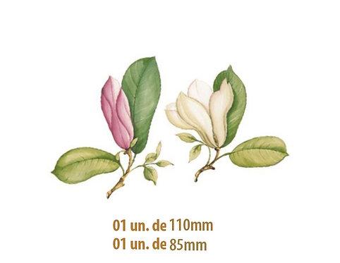 Magnolia - 85mm e 110mm