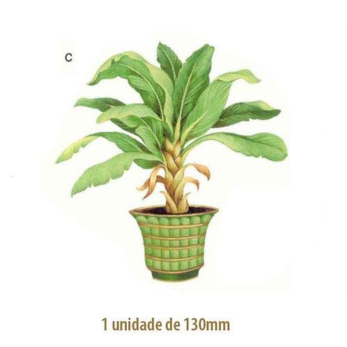 Palmeira Bermuda - 130mm