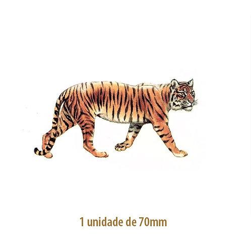 Tiger - 70mm