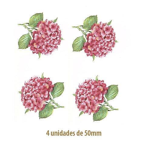 Hortensia Rosa - 50mm