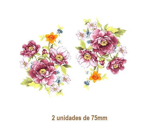 Alejandra - 75mm