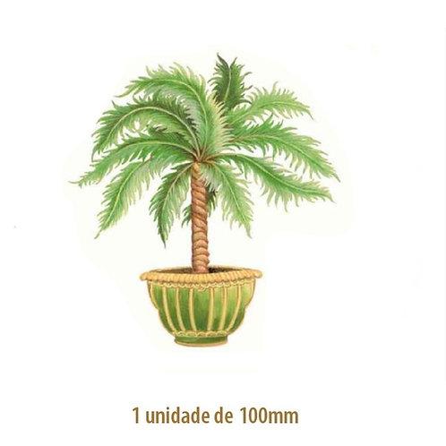 Palmeira Thaiti - 100mm