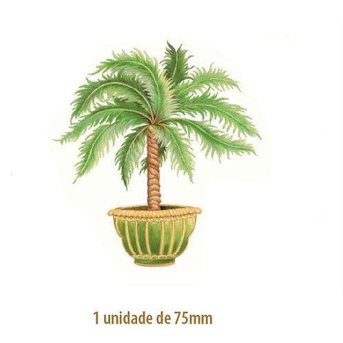 Palmeira Thaiti - 75mm