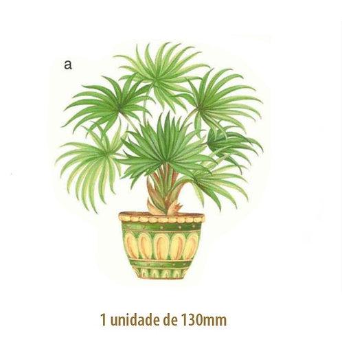 Palmeira Waikiki - 130mm