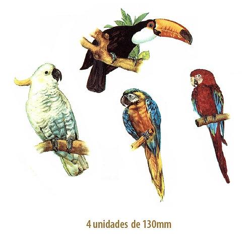 Exotic Birds - 130mm