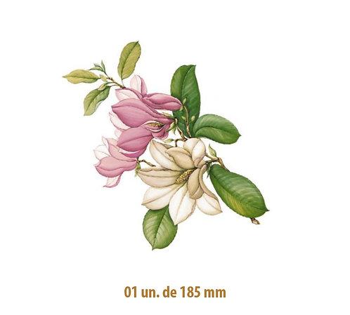 Magnolia - 185mm