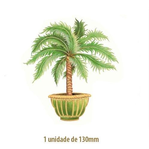 Palmeira Thaiti - 130mm