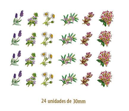 Herbs - 30mm