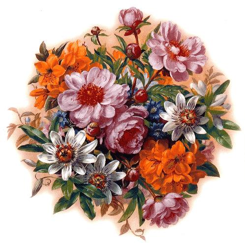 Passion Flower 150mm
