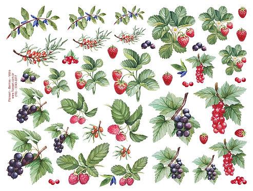 Berries - Colorido para Vidro