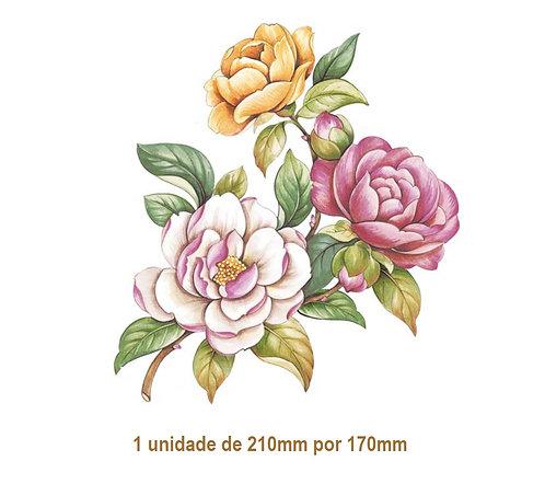Camellia - 210x170mm