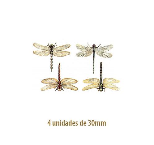 Libellules - 30mm