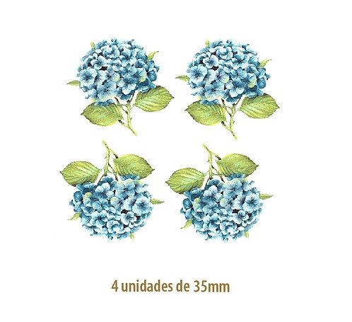 Hortensia Azul - 35mm
