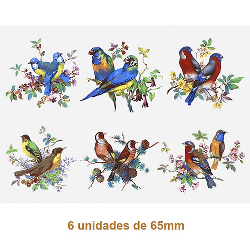 Beauty Birds 65mm