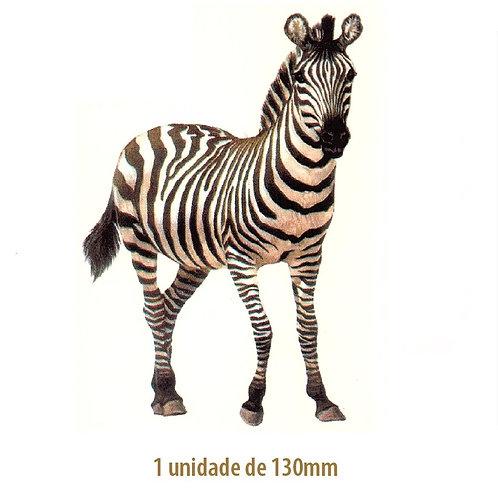 Zebra - 130mm