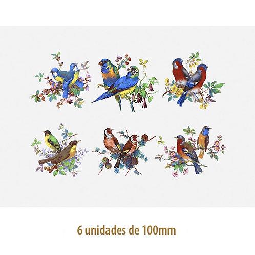 Beauty Birds 100mm