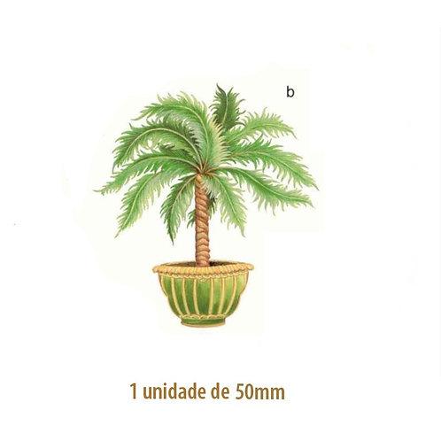 Palmeira Thaiti - 50mm