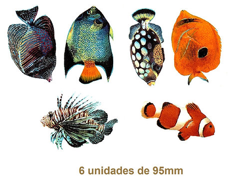 Tropical Fishes - 95mm
