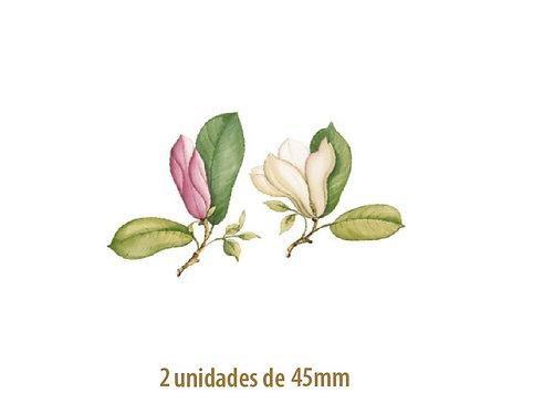 Magnolia - 45mm