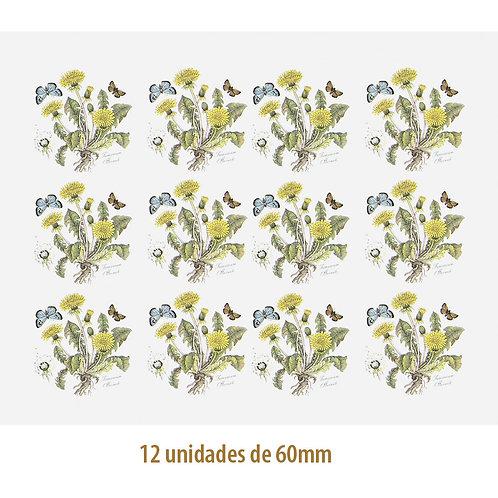 Dandelion 60mm
