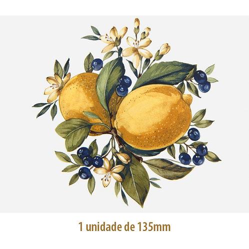 Lemons - 135mm