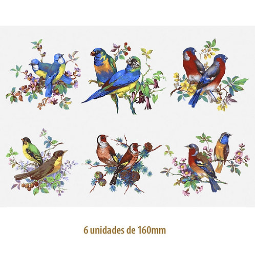 Beauty Birds 160mm