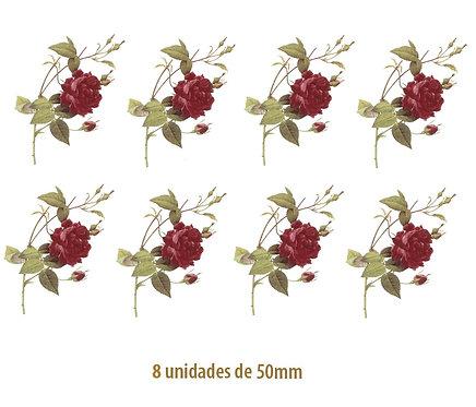 Rosa Gallica - 50mm
