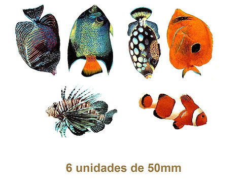 Tropical Fishes - 50mm