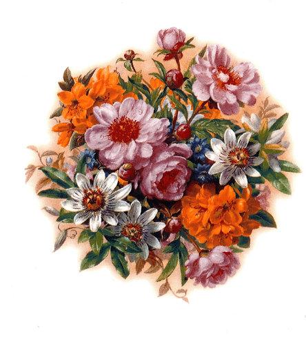 Passion Flower 95mm
