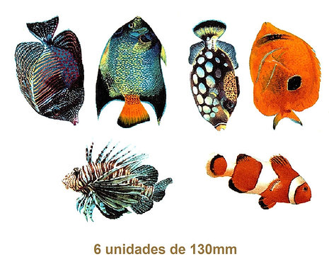 Tropical Fishes - 130mm