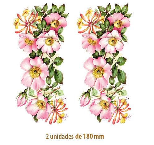 Wild Rose - 180mm