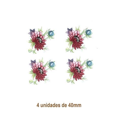 Flowers of February - 35mm