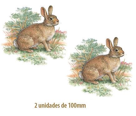 Rabbit - 100mm