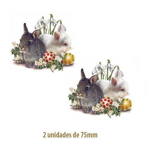 Bunnies - 70mm