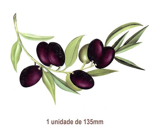 Olives - 135mm
