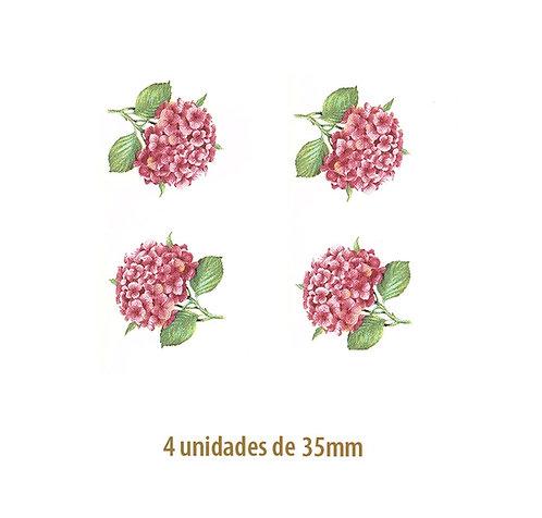Hortensia Rosa - 35mm
