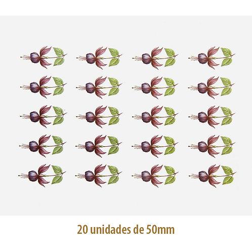 Fucsia Popple E - 50 x 28mm