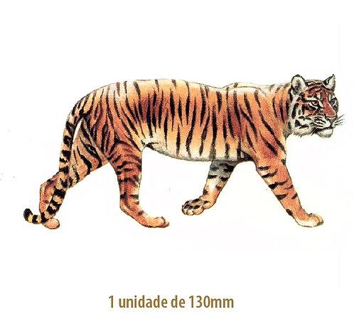 Tiger - 130mm