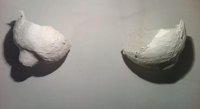 HORTUS DELITIARUM by Grazia Amendola