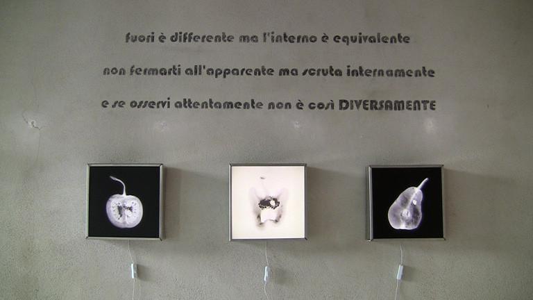 DIVERSAMENTE BIO by Grazia Amendola