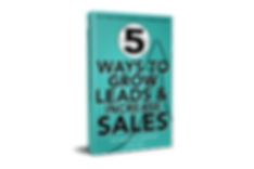 5 Ways Leads & Sales 3d 1.png